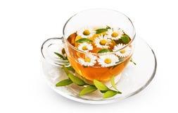 Thé avec des fleurs Images stock