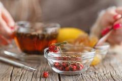 Thé chaud de miel avec des herbes Photographie stock
