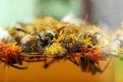 thé d'herbes médical Photographie stock
