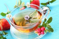 Thé de vitalité Photos stock