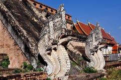 TH di Chiang Mai: Due draghi di pietra del Naga Immagini Stock Libere da Diritti
