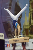 5th European Championships in Artistic Gymnastics Stock Image
