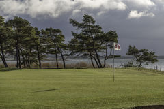 18th helt med träd Royaltyfri Foto