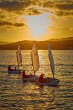 30th International Vila de Palamós Optimist Trophy, 14th Nations Cup. Sailboats sailing to the harbor small town Palamos in stock images