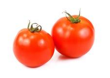 10th 2010 isolerade bakgrund kan fotoet tagen white för tomater två Royaltyfria Bilder