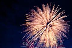 4th Juli fyrverkerier Fyrverkeri på mörk himmelbakgrund Royaltyfri Fotografi