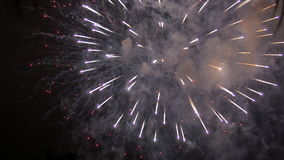 4th of July fireworks stock video footage