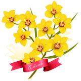 8th March illustration. Holiday yellow flowers background. Vector vector illustration