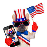 4th oh july dog. French bulldog waving a flag of usa on independence day on 4th  of july , isolated on white background, while taking a selfie Stock Photography