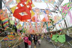 2013 Poli- Międzynarodowych kani festiwali/lów Fotografia Royalty Free