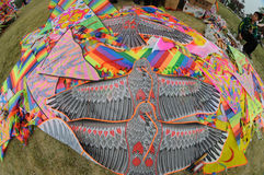 The 2013 Poly International Kite Festival Stock Photography