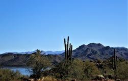 4TH Roczna motocykl przejażdżka dla Solankowych Rzecznych Dzikich koni, Arizona, Stany Zjednoczone zdjęcia stock