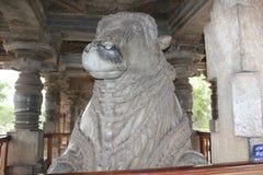 6th största monolitiska Nandi för Hoysaleswara tempel stora tjur i Indien Royaltyfri Foto