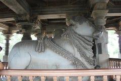 6th största Nandi för Hoysaleswara tempel som skulptur är monolitisk i Indien Arkivbild
