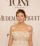 68th Tony Awards anual Imagem de Stock Royalty Free