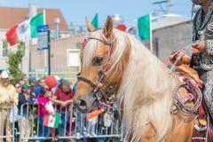 26th Uliczna Meksykańska dzień niepodległości parada Chicago Obrazy Royalty Free