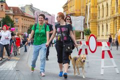 15th Zagreb pride. LGBTIQ activists on street. ZAGREB, CROATIA - JUNE 11, 2016: 15th Zagreb pride. LGBTIQ activists walking the dog decorated with rainbow royalty free stock photography