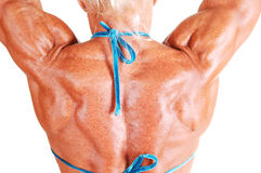 Tha back of a muscular woman. An bodybuilding woman shooing her muscular upper back and arms Stock Photos