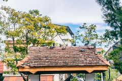 Tha Pae gate in Chiang Mai Stock Photography