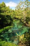 Tha Pom clear tropical stream Stock Photo