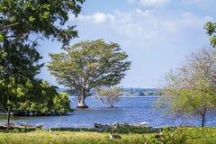 Thabbowa fristad i Puttalam, Sri Lanka Arkivfoto