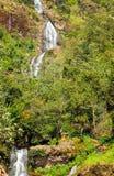 Thac Bac Waterfall Silver falls in Sapa Vietnam Royalty Free Stock Image