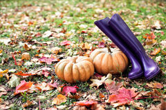 Thackray op de herfstbladeren met gumboots Royalty-vrije Stock Foto's