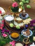 thai örtar Arkivfoton