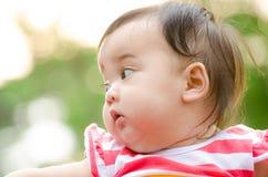 Thai baby. Portrait of Cute Asia baby 'Thailand Stock Photo