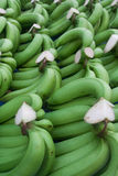 Thai Banana. Sold in market Royalty Free Stock Photography
