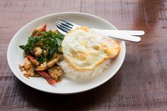 Thai basil chicken fried rice with egg. Thai famous food,  slice chicken with holy basil served with steamed jasmin rice and fired egg. Traditional Thailand Stock Images