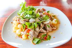 Thai Beef Spicy Salad royalty free stock photography