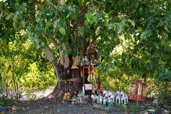 Thai believe in the peepul tree Royalty Free Stock Image