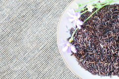 Thai Berry rice Royalty Free Stock Images