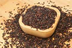 Thai black jasmine rice (Rice berry) Stock Photos