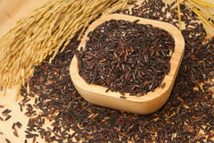 Thai black jasmine rice (Rice berry) Stock Photo