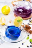 Thai blue butterfly pea tea royalty free stock images