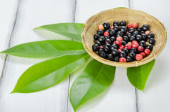 Thai Blueberry fruit Royalty Free Stock Photography