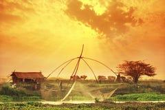 Thai bonde Arkivfoton