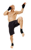 Thai box fighter kicking with the knee Stock Image