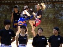 thai boxas kick Royaltyfria Foton