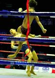 Thai Boxing Royalty Free Stock Image