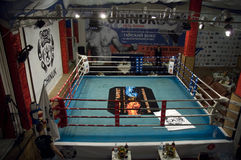 Thai boxing fight club Osminog Royalty Free Stock Image