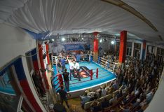 Thai boxing fight club Osminog Royalty Free Stock Photo