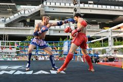 Thai Boxing Match Royalty Free Stock Photography