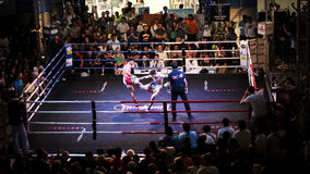 Thai boxing. Muay thai boxing Royalty Free Stock Images