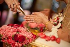 thai bröllop Royaltyfri Fotografi