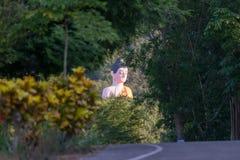 thai buddha staty Arkivfoton