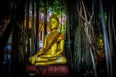 Thai Buddhas 9 stock photo