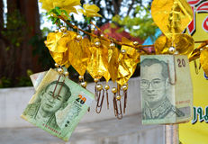 Thai buddhist money tree golden Stock Photos